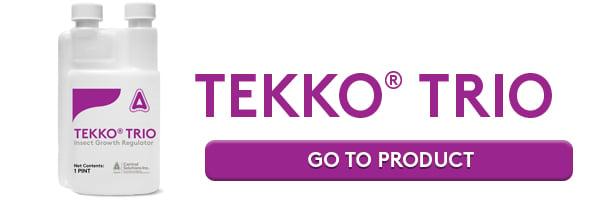 CTA_TEKKO-TRIO