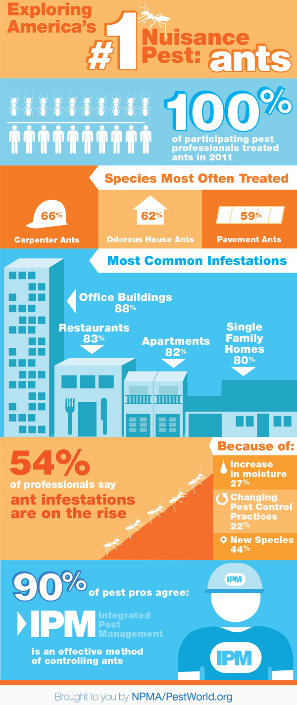 ANTS_infographic_NPMA_BLOG