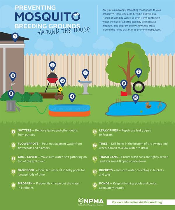 npma_mosquito-breeding-infographic