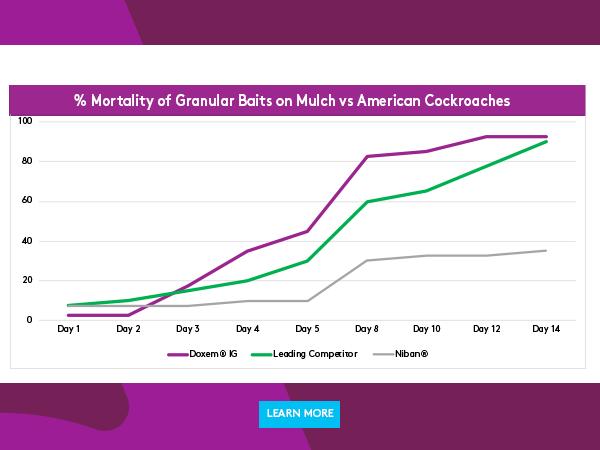 graph_american.cockroach.CTA