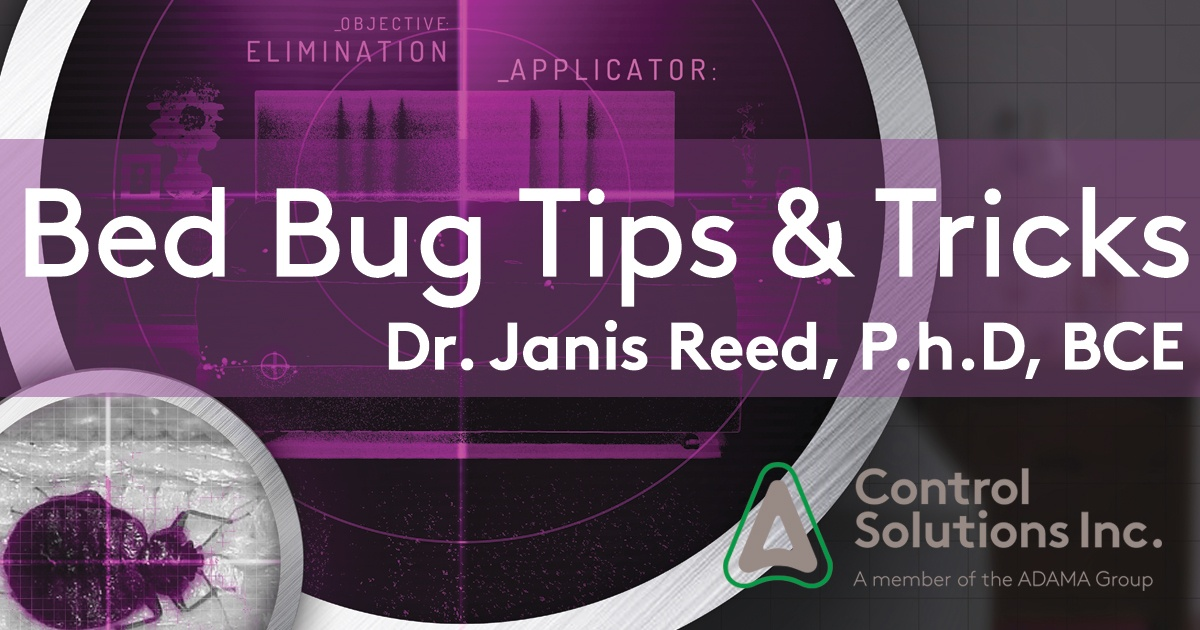 Bed-Bug-Tips-and-Tricks