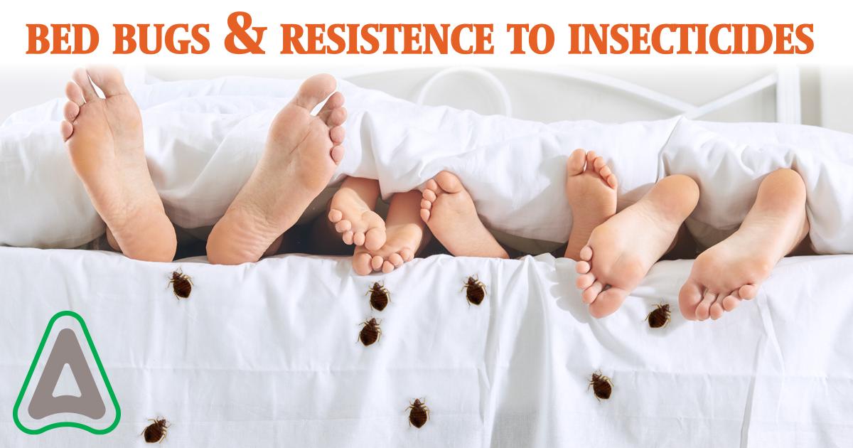 HEADER.Bed_Bug_resistance