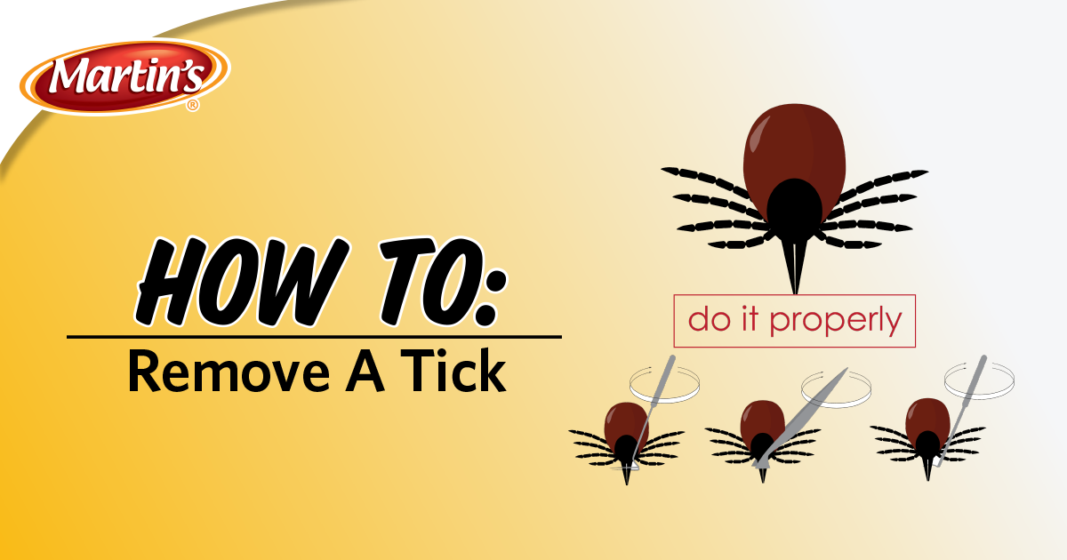 HEADER.removing_a_tick