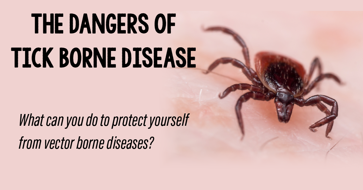 HEADER.ticks_born_disease